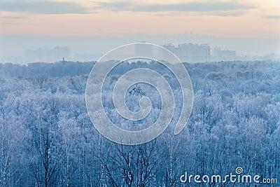Blauer Sonnenaufgang im sehr kalten Wintermorning