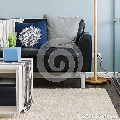 Schwarzweiss Kissen Auf Blauem Sofa Im Wohnzimmer Stockfoto Bild