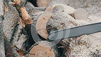Blauwe de boomboomstammen van kettingzaagbesnoeiingen voor een brand stock videobeelden