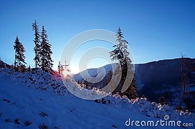 Blauwe schemering in de bergen