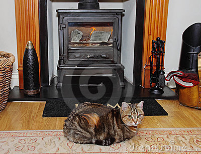 Blazing stove with Tabby Cat on a rug