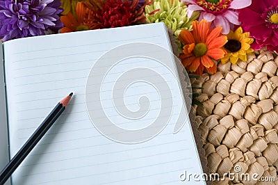 Bleistift gesetzt auf Notizbuch