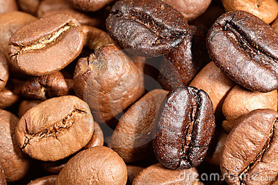 Blend of coffee beans