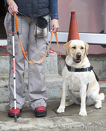 Free Blind Person With Her Guide Dog Stock Images - 58481214