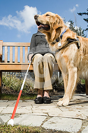 Free Blind Woman And A Guide Dog Stock Photos - 62557013