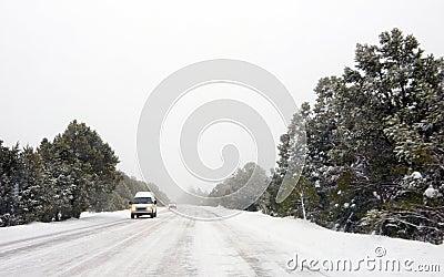 Blinding Snow Storm