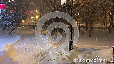 Blizzard da neve no parque video estoque