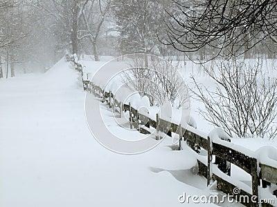 Blizzard in February