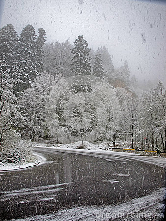 Blizzard road