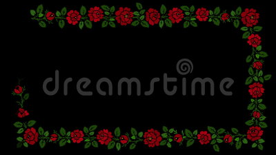 Bloemenkader op zwarte achtergrond stock video