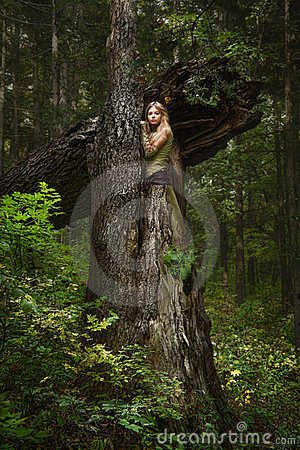 Free Blond Girl In A Magic Forest Stock Photos - 23435463