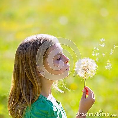 Free Blond Kid Girl Blowing Dandelion Flower In Green Meadow Royalty Free Stock Photography - 36146697