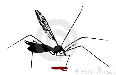 Blood mosquito