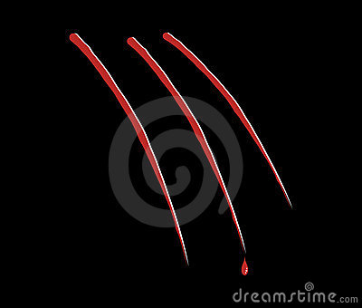 Bloody claw scratch vector
