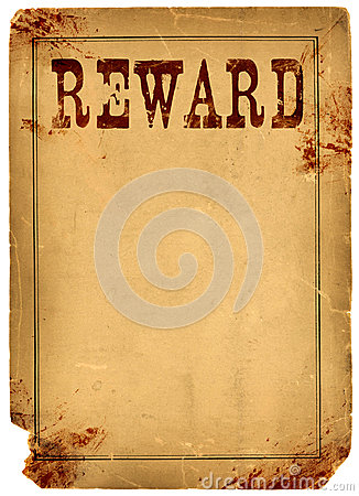 missing person reward template
