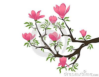Magnolia Clipart Blooming-magnolia-11736329.jpg