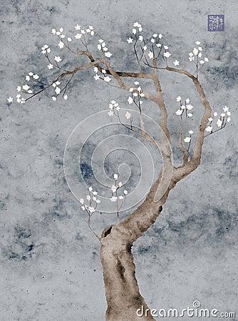 Blooming prunus tree