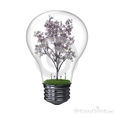 Blooming tree inside lightbulb