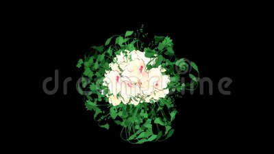 Blooming White Flowers and Leaves Animation Graphic Element. Alpha Channel included. Stock Photo