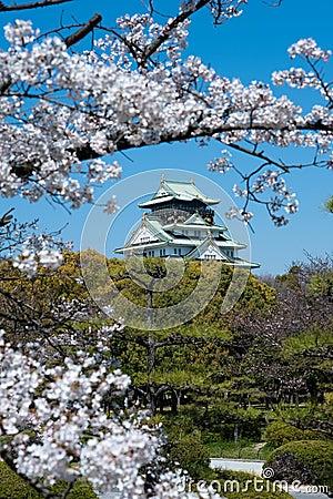 Through the blossom trees, Japanese castlein Osaka