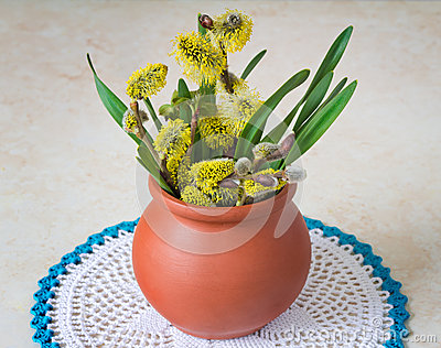 Blossoming branches of a willow in a ceramic vase Stock Photo
