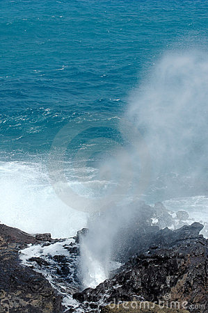 The Blow Hole
