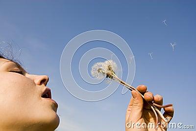 Blowing the dandellion