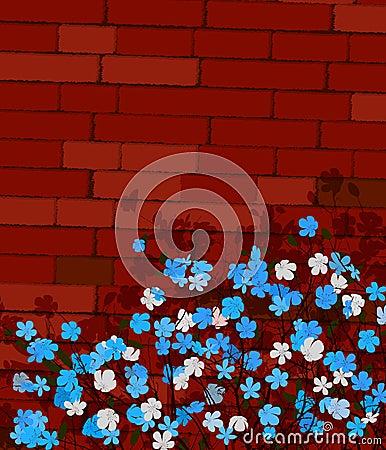 Blått blommar på en vägg