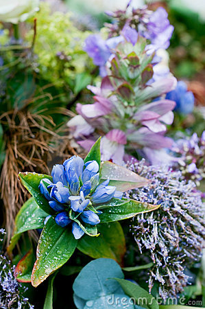 Free Blue Arrangement For Funeral Stock Photo - 12686680