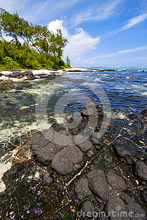Free Blue Bay Foam   Deus Cocos In Mauritius Royalty Free Stock Photography - 40396727