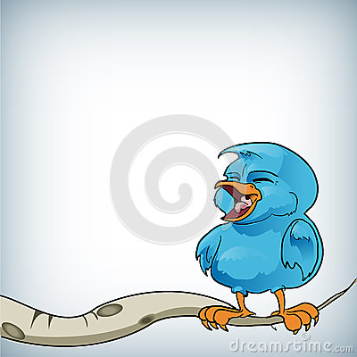 Blue bird on a branch