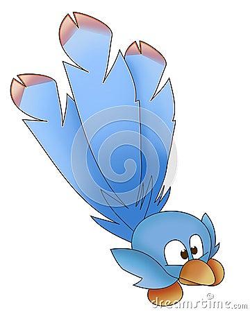 Blue bird funny
