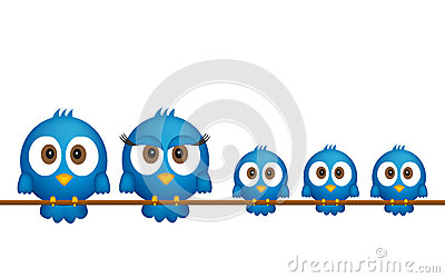 Blue birds family