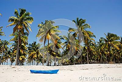 Blue boat on the Pangane Beach