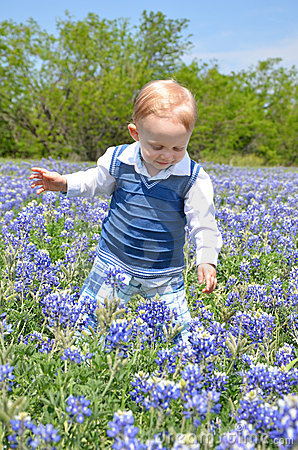 Blue Bonnet Baby