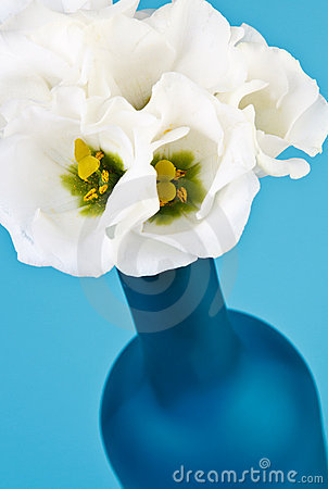 Blue bottle with flowers