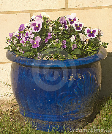 Blue bowl of pansies set against a stone wall.
