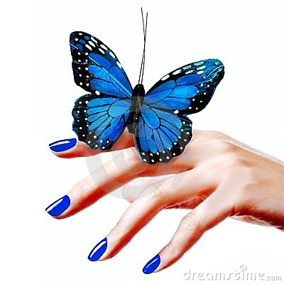 Free Blue Butterfly Royalty Free Stock Image - 8230276