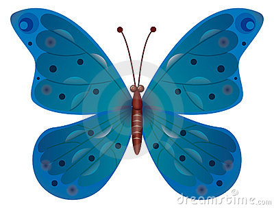 A blue butterfly isolated