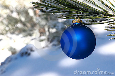 Blue Christmas Ball in a Snowy Pine Tree