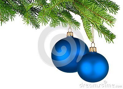 Blue Christmas baubles hanging from fresh green twigs