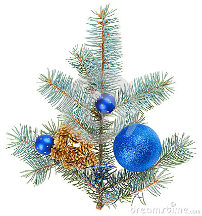 Blue christmas decoration balls on spruce branch