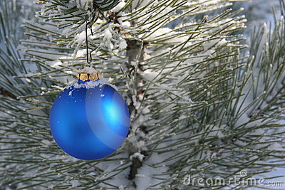 Blue Christmas Ornament in Snowy Pine Tree