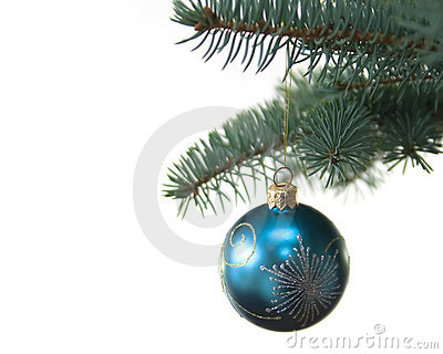Blue christmas tree ball on fir brach