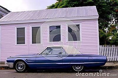Blue convertible thunderbird car