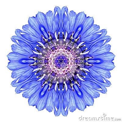 Free Blue Cornflower Mandala Flower Kaleidoscope Isolated On White Royalty Free Stock Photos - 45976658
