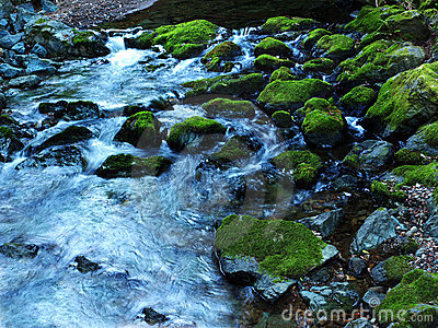 Blue creek with moss covered rocks