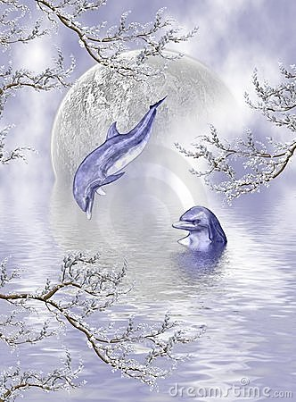 Free Blue Dolphin Dreams Royalty Free Stock Photography - 3242527