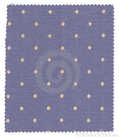 Blue Dotted Fabric Swatch