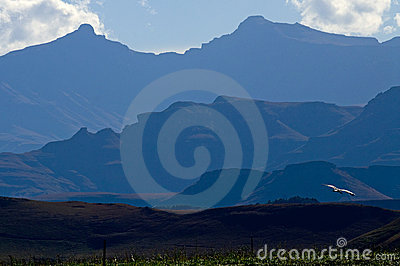 Blue Drakensberg Mountains